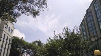 xiaomi_mi_4i_outdoor_sample.jpg