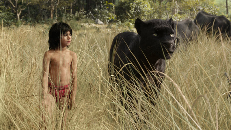 The Weekend Chill: The Jungle Book, Star Wars, and More