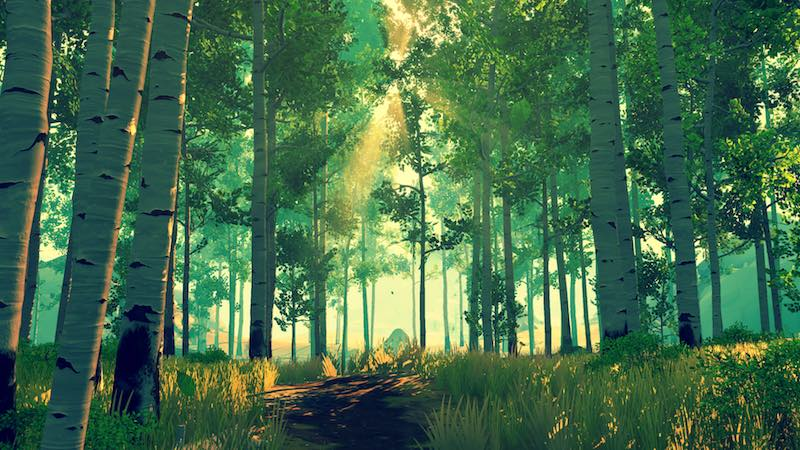 forest_firewatch_camposanto.jpg
