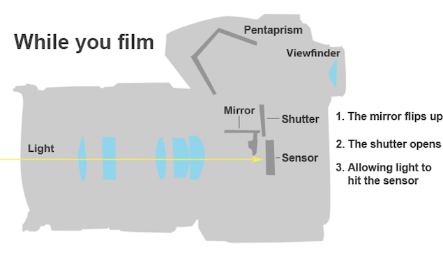 mirrorless_vs_dslr_pentaprism_diagram.jpg