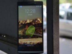 Xolo Q2100 Review: Not Just a One-trick Pony