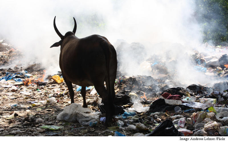 India_garbage_burning.jpg