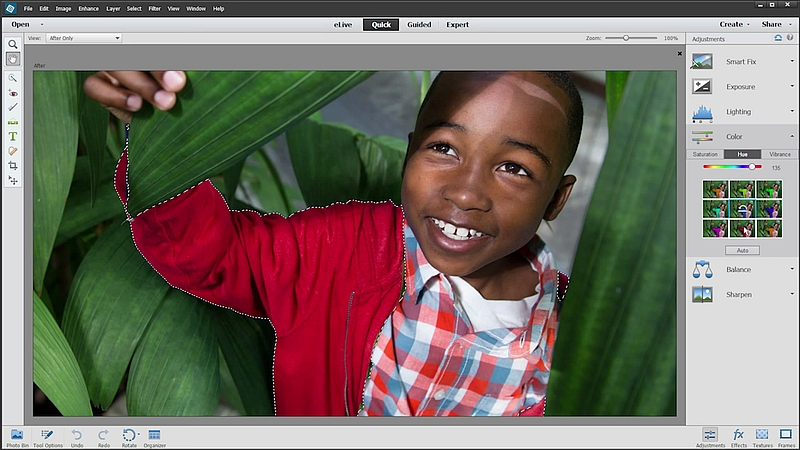 Adobe Photoshop, Premiere Elements 14 Get New Tools and 4K Video Support