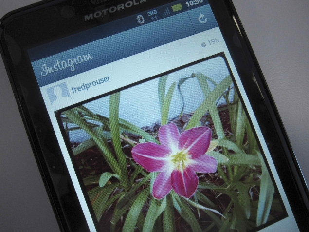 Instagram asks court to throw out lawsuit over service terms