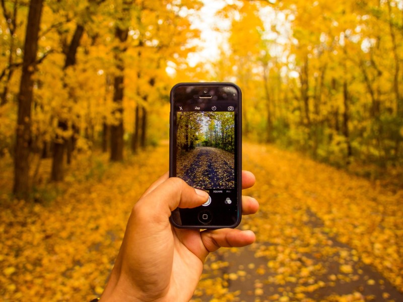 Tips and Apps for Better Mobile Phone Photography