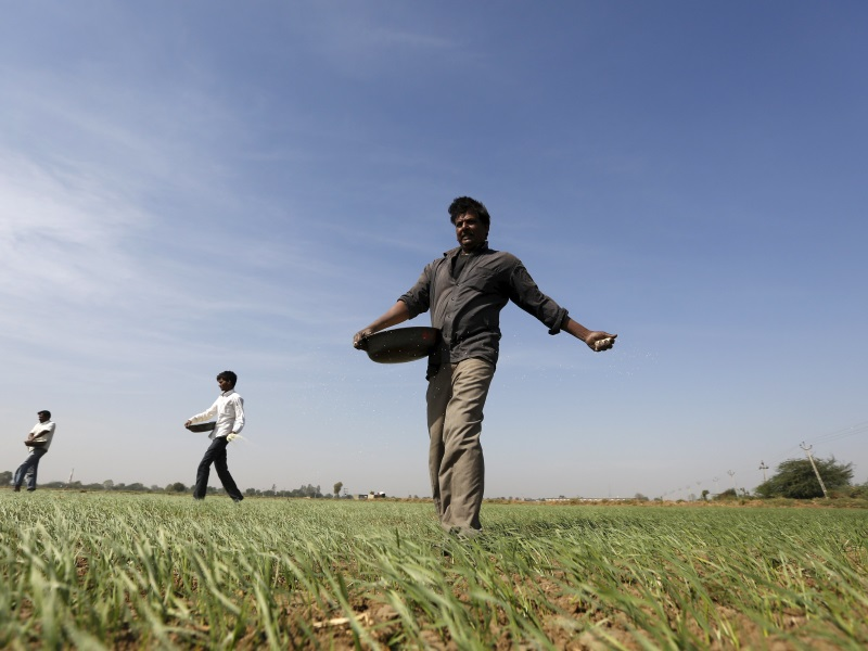 Government Launches AgriMarket, Crop Insurance Apps for Farmers