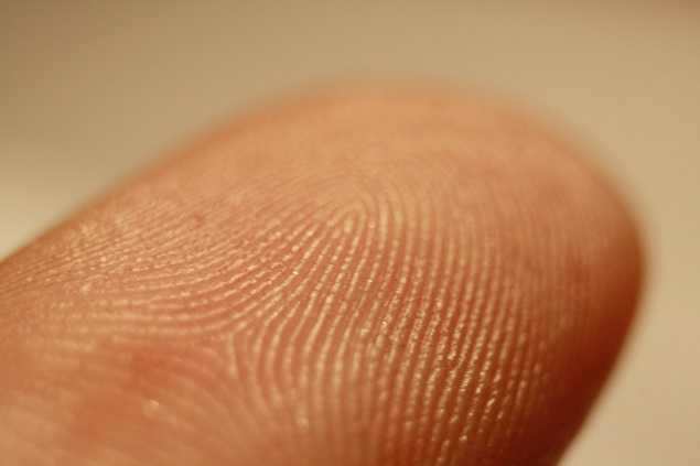 LG G3, Optimus G Pro successor to feature fingerprint scanner: Report