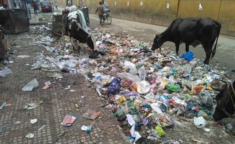 Swachh Delhi App Fields Over 13,000 Complaints in Week Since Launch