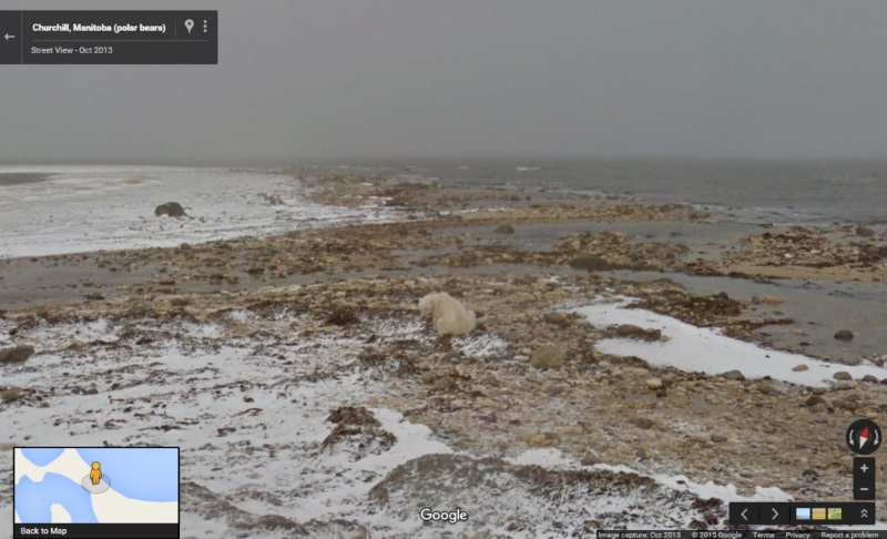 Google Street View Shows Toll of Climate Change