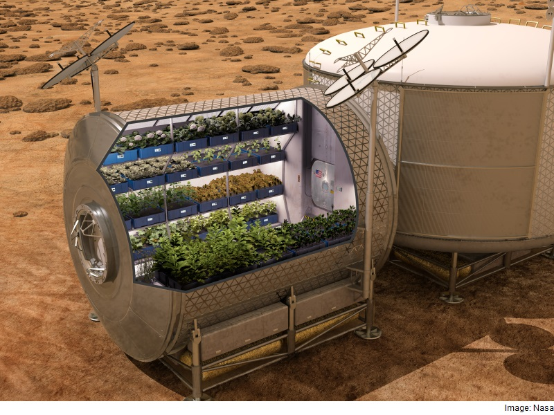 ISS Astronauts to Sample Leafy Greens Grown on Space Station