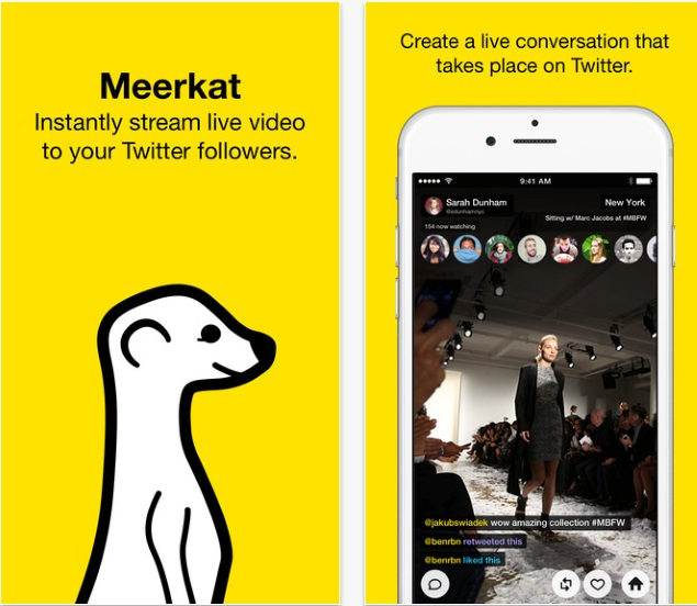 Twitter Move to Cut Off Meerkat Could Help It Grow: CEO