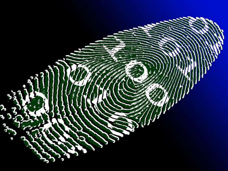 Gang of Online Fraudsters Busted in New Delhi