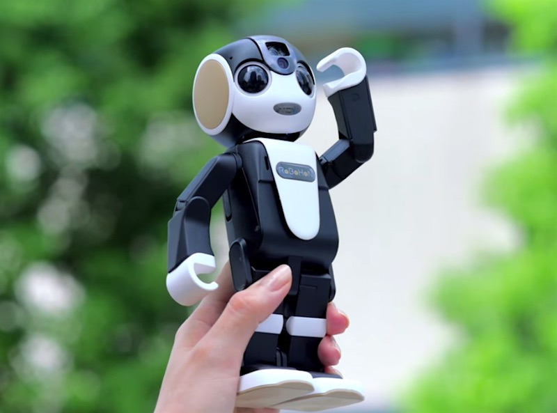 RoBoHon Robot Mobile Goes on Sale in Japan