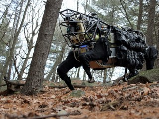 Google's Holding Company Alphabet Puts Boston Dynamics Up for Sale: Report