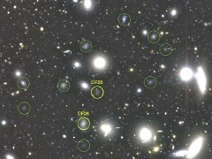 Over 800 'Dark Galaxies' Found in Coma Cluster