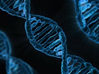 Japan Earmarks JPY 8.6 Billion to Develop Genome Editing Technology