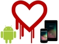 Android 4.1.1 devices vulnerable to Heartbleed bug, says Google