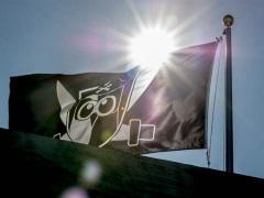 Hootsuite Raises $60 Million in Investments at $1 Billion Valuation