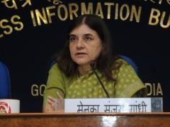 शक्तिमान की मौत के लिए जिम्मेदार व्यक्ति को गिरफ्तार किया जाए : मेनका गांधी