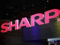 Qualcomm's investment in Sharp faces a delay