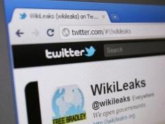 Icelandic Hacker Says Guilty of Stealing Money From Wikileaks
