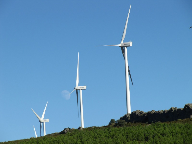 Google Buys Output From Two New Nordic Wind Farms