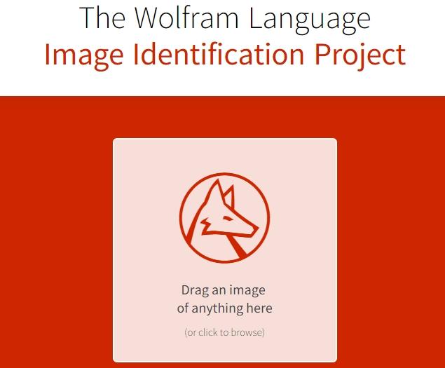 wolfram_image_identify_home.jpg