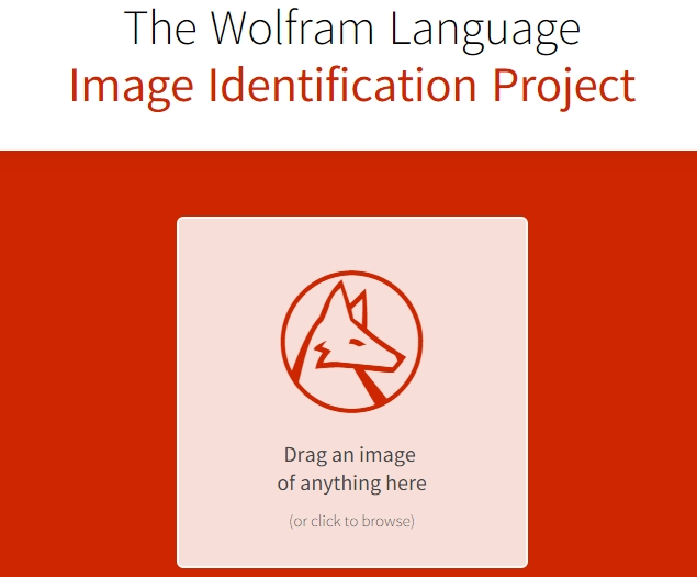 Wolfram Alpha's New Website Tries to Identify the Contents of Any Image