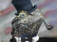 Lizard Squad Selling DDoS Attack Service in Exchange for Bitcoins
