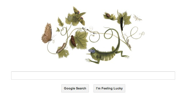 Maria Sibylla Merian's birthday celebrated by Google doodle